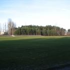 Renowacja Stadionu