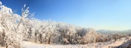 Treningi - zima 2014/15
