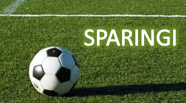 Sparingi (aktualizacja) przed rundą rewanżową 2014/2015