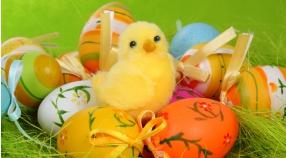 Pogodnych Świąt Wielkanocnych!!!