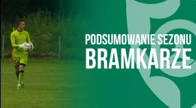 Bramkarze: Podsumowanie sezonu 2014/15