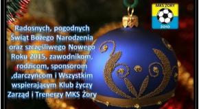 WESOŁYCH ŚWIĄT i DO SIEGO 2015 ROKU !!!