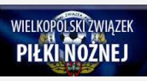 Wyniki turniejów o Puchar Prezesa WZPN