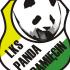 Panda Pamięcin